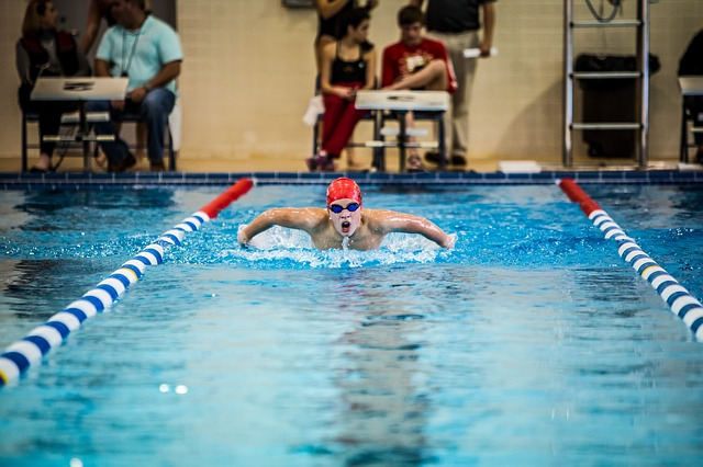 Závody v plavání